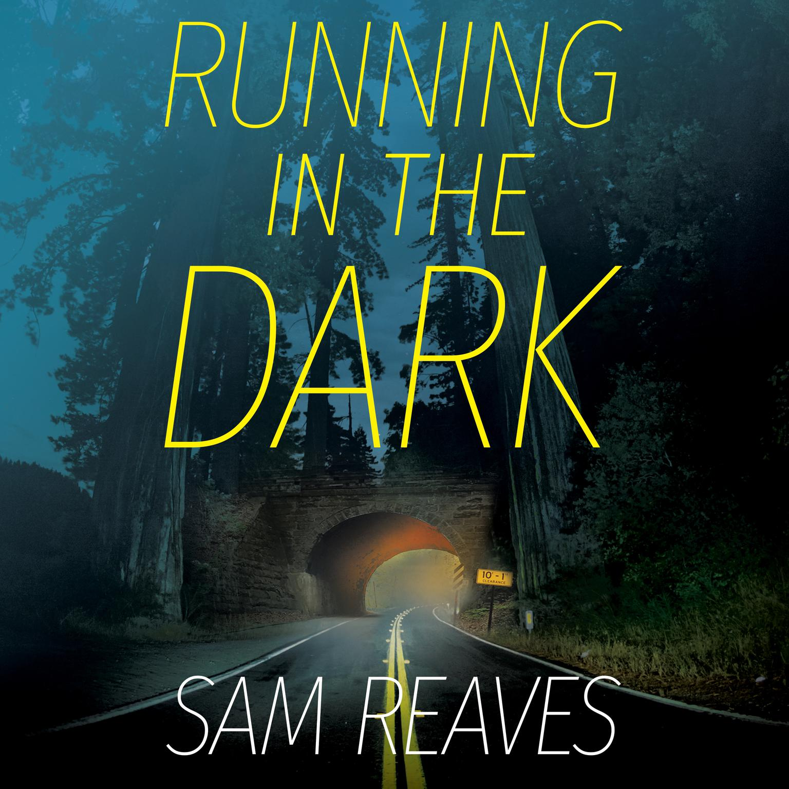 Printable Running in the Dark Audiobook Cover Art