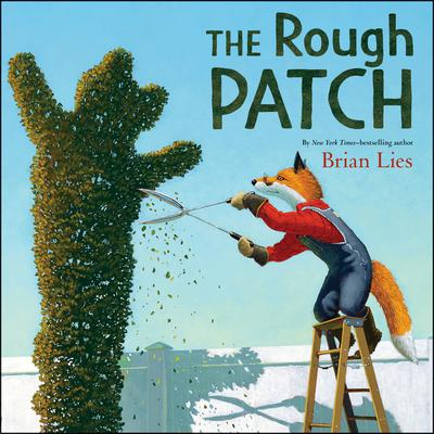 The Rough Patch Audiobook, by Brian Lies