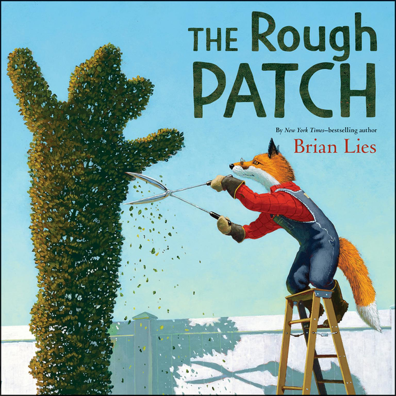 Printable The Rough Patch Audiobook Cover Art