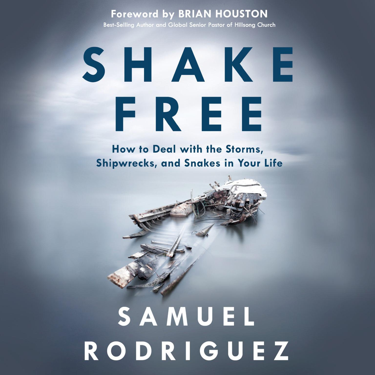 Printable Shake Free: How to Deal with the Storms, Shipwrecks, and Snakes in Your Life Audiobook Cover Art