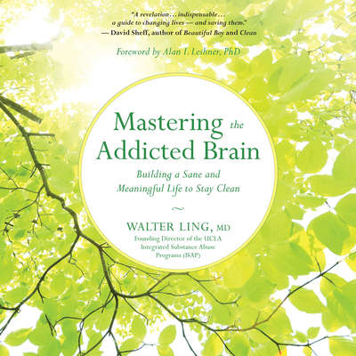 Mastering the Addicted Brain: Building a Sane and Meaningful Life to Stay Clean Audiobook, by Walter Ling