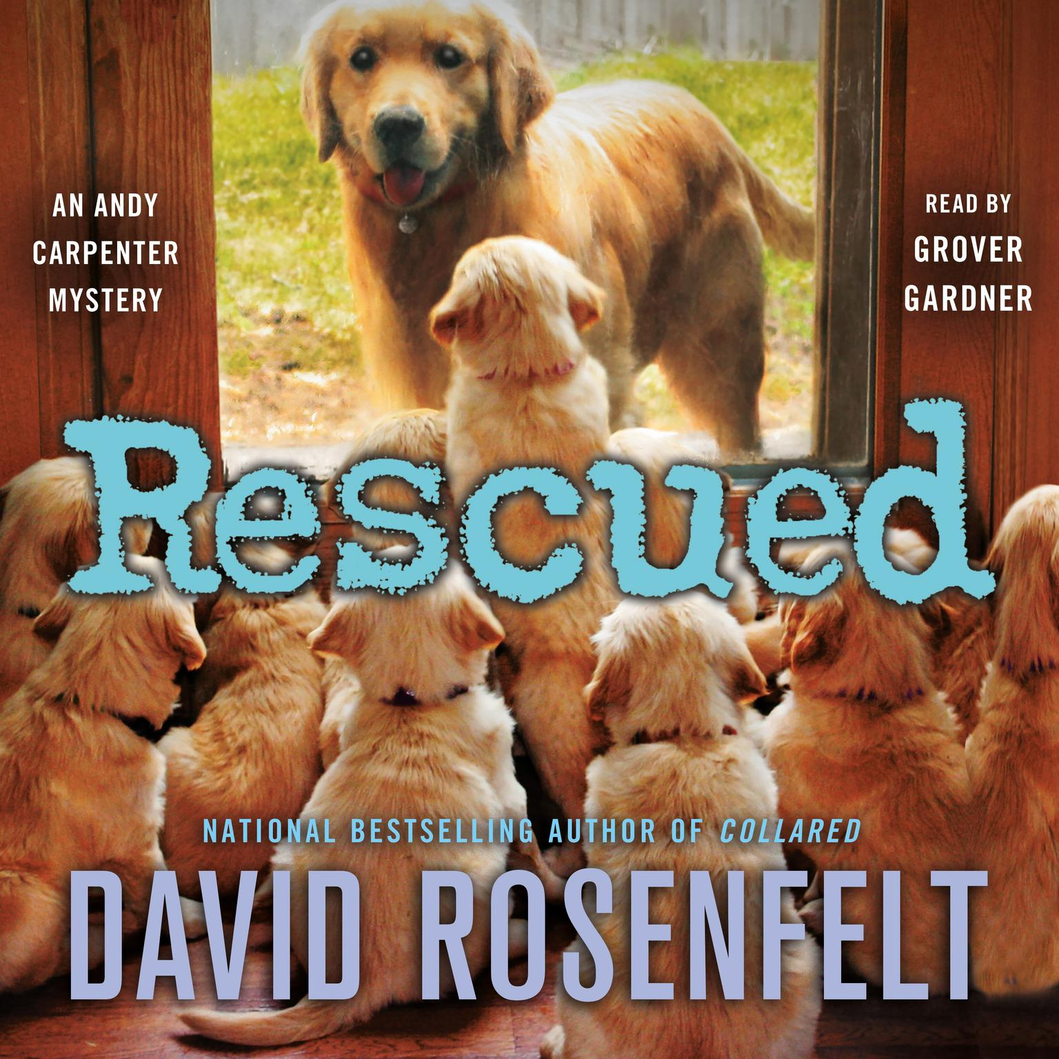 Printable Rescued: An Andy Carpenter Mystery Audiobook Cover Art