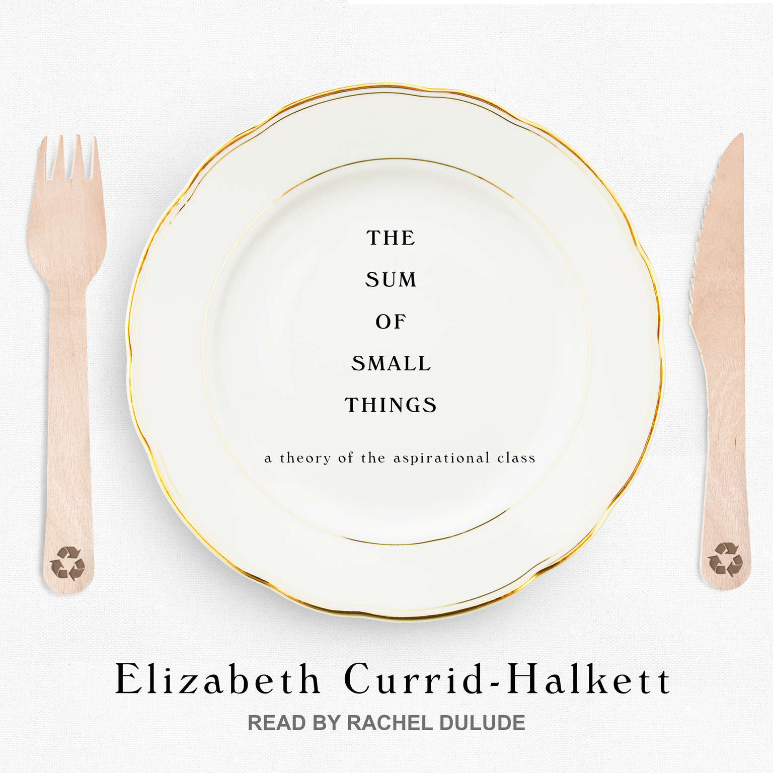 The Sum of Small Things: A Theory of the Aspirational Class Audiobook, by Elizabeth Currid-Halkett