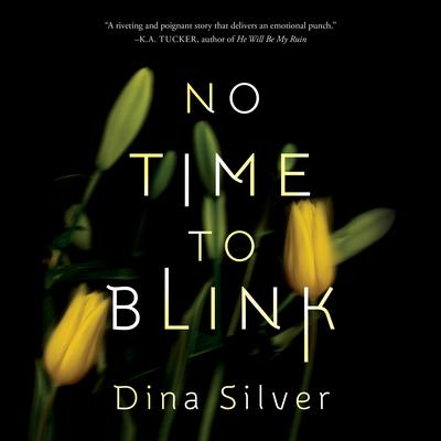 No Time To Blink Audiobook, by Dina Silver