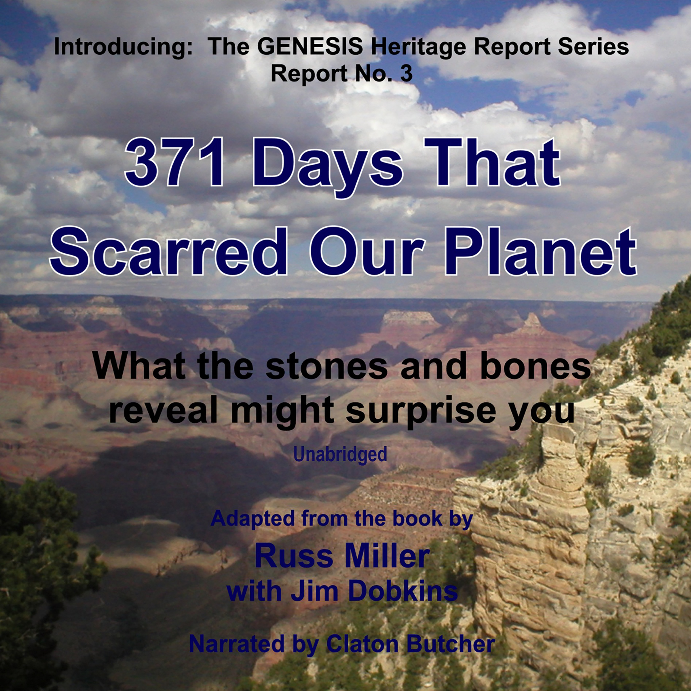 Printable 371 Days That Scarred Our Planet: What the Stones and Bones Reveal Might Surprise You Audiobook Cover Art
