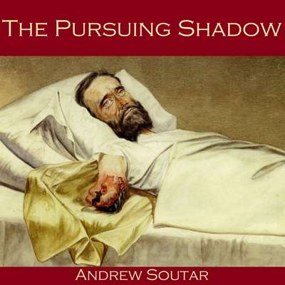 The Pursuing Shadow Audiobook, by Andrew Soutar