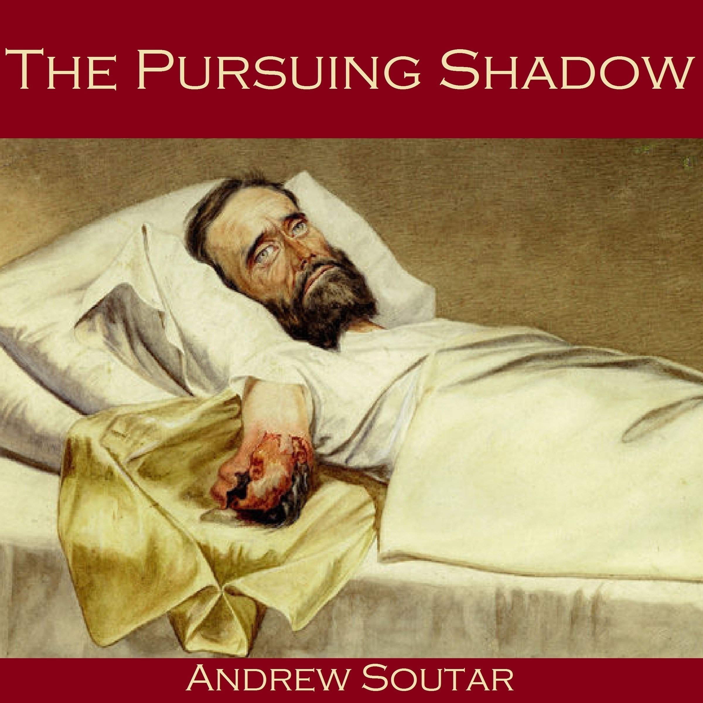 Printable The Pursuing Shadow Audiobook Cover Art