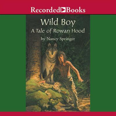Wild Boy Audiobook, by Nancy Springer