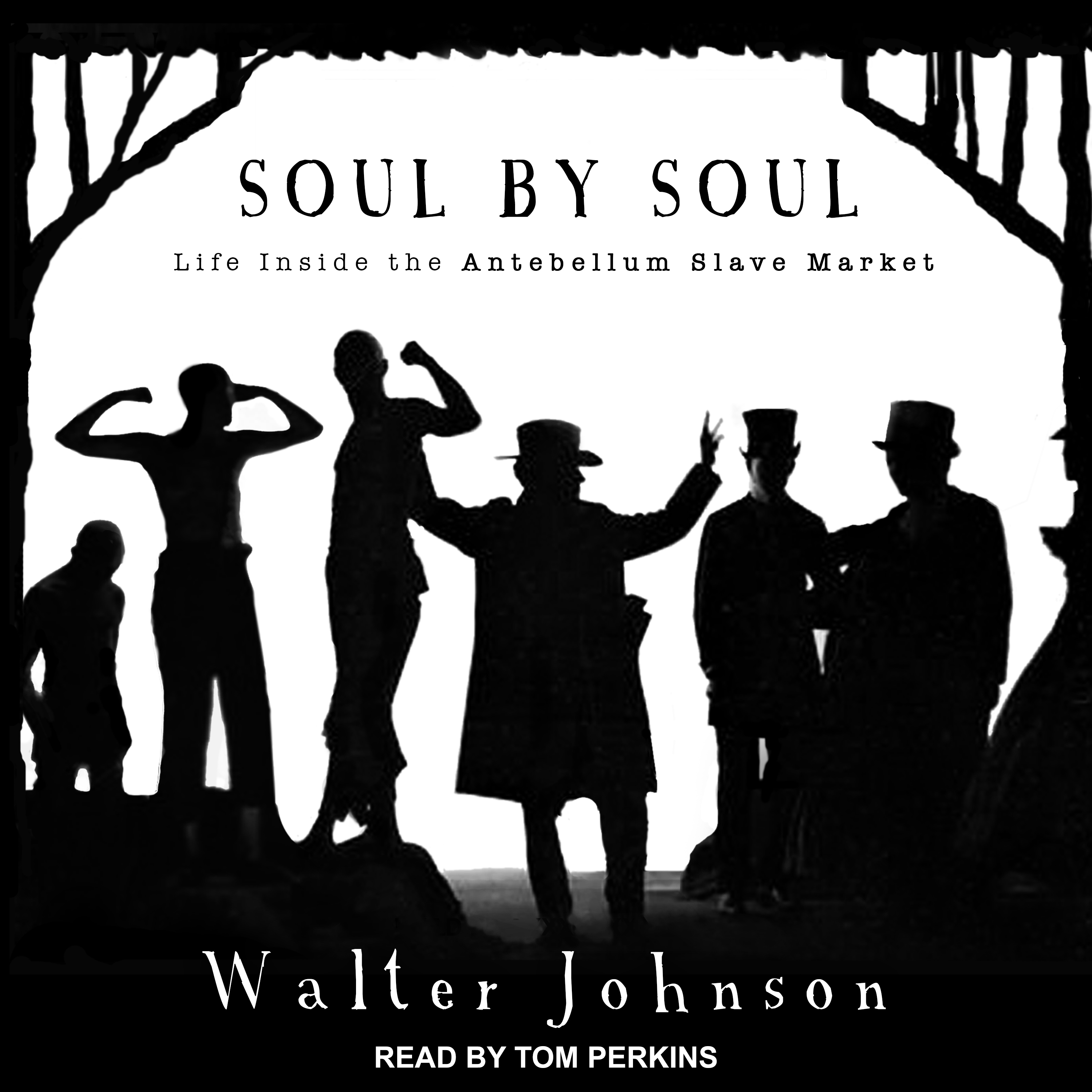 Printable Soul by Soul: Life Inside the Antebellum Slave Market Audiobook Cover Art