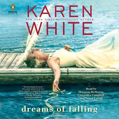 Dreams of Falling Audiobook, by Karen White