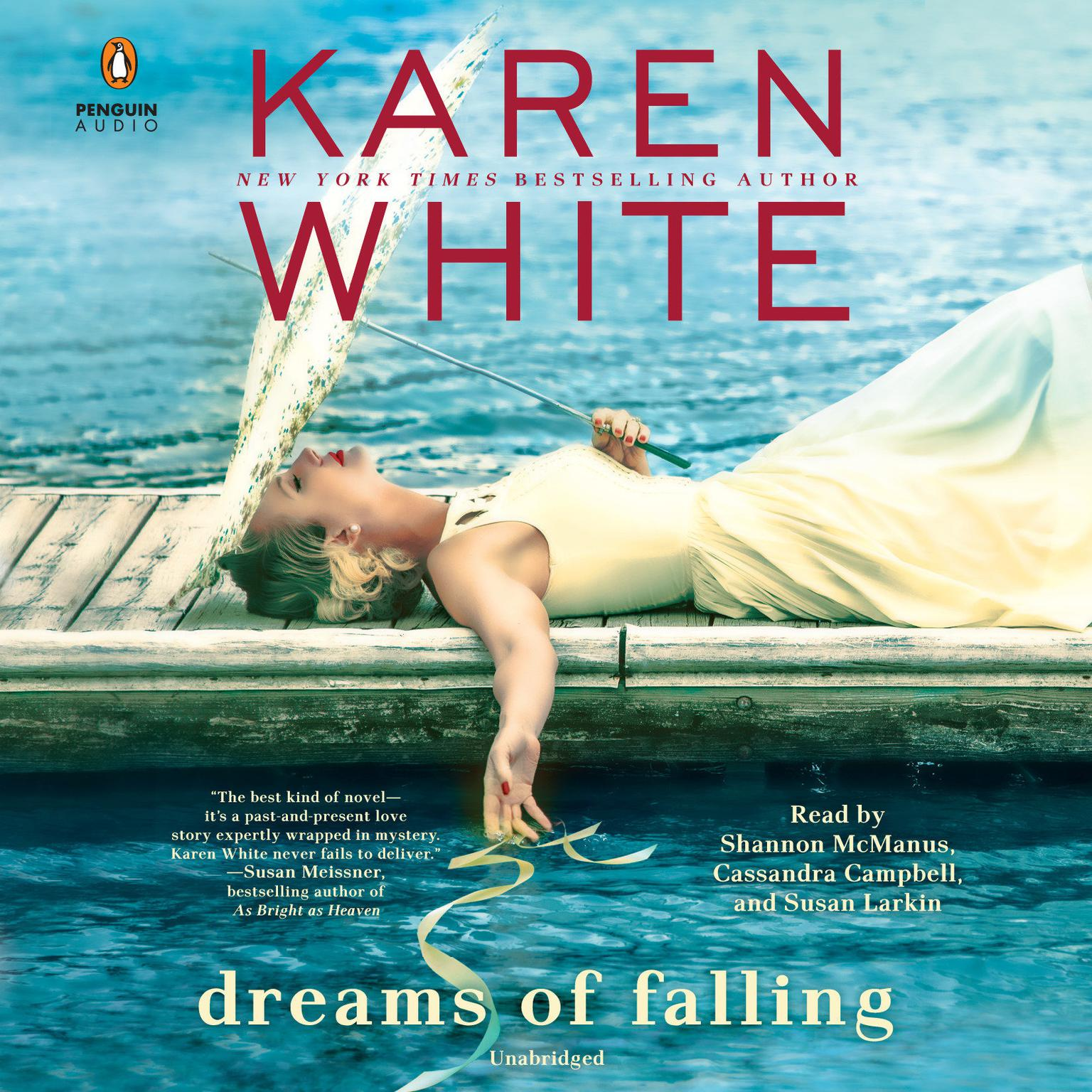 Printable Dreams of Falling Audiobook Cover Art