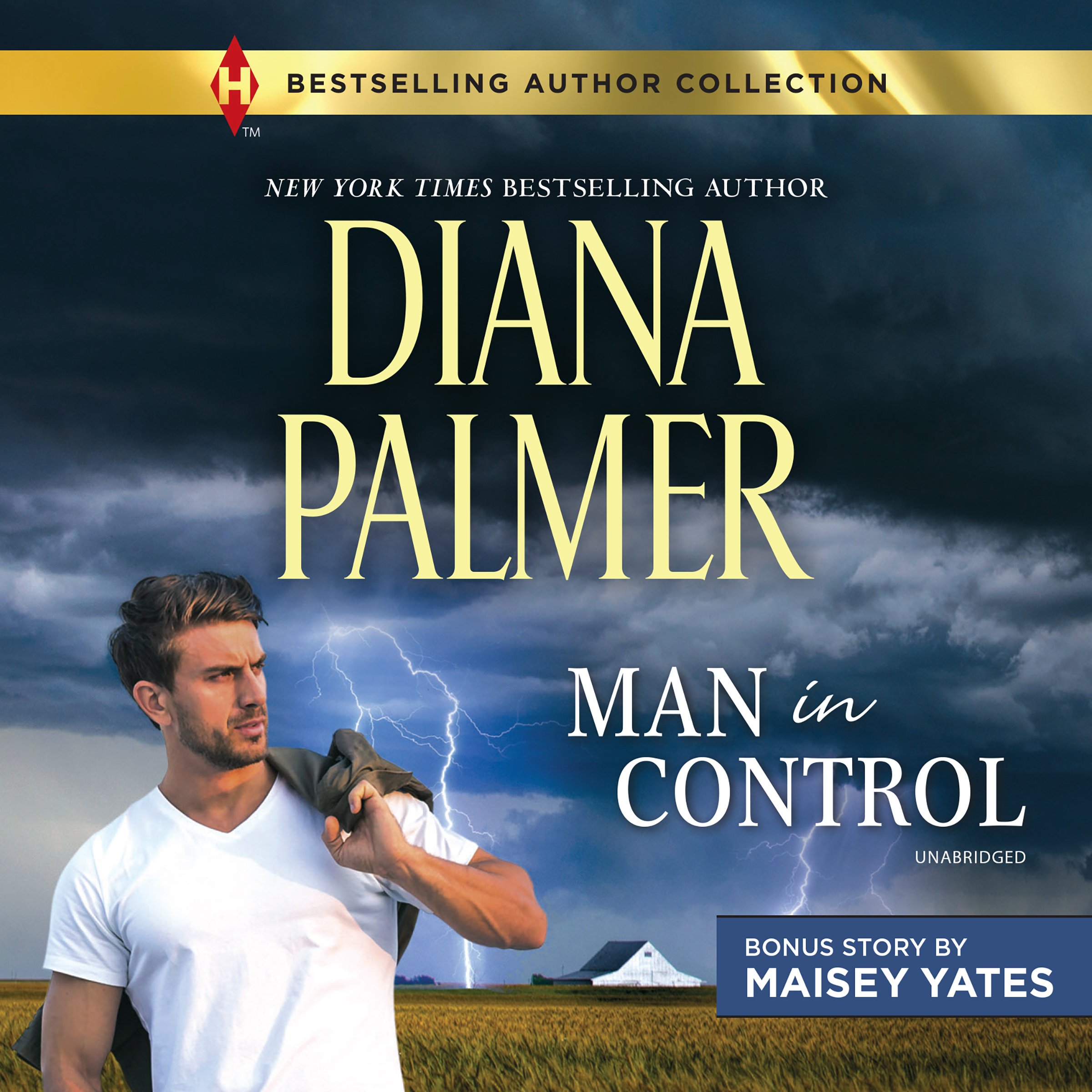 Printable Man in Control & Take Me, Cowboy Audiobook Cover Art