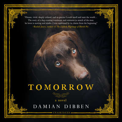 Tomorrow Audiobook, by Damian Dibben