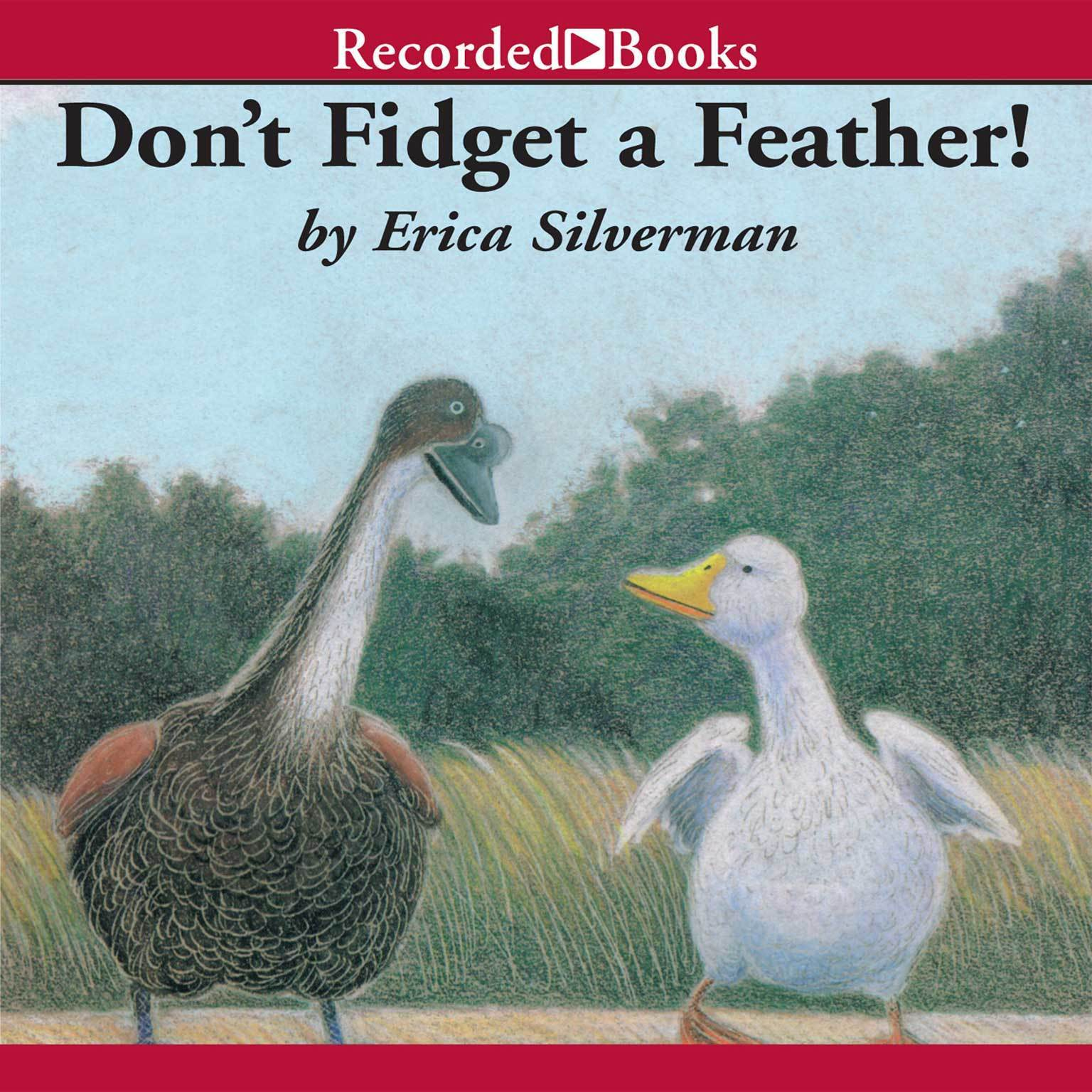 Printable Don't Fidget a Feather Audiobook Cover Art