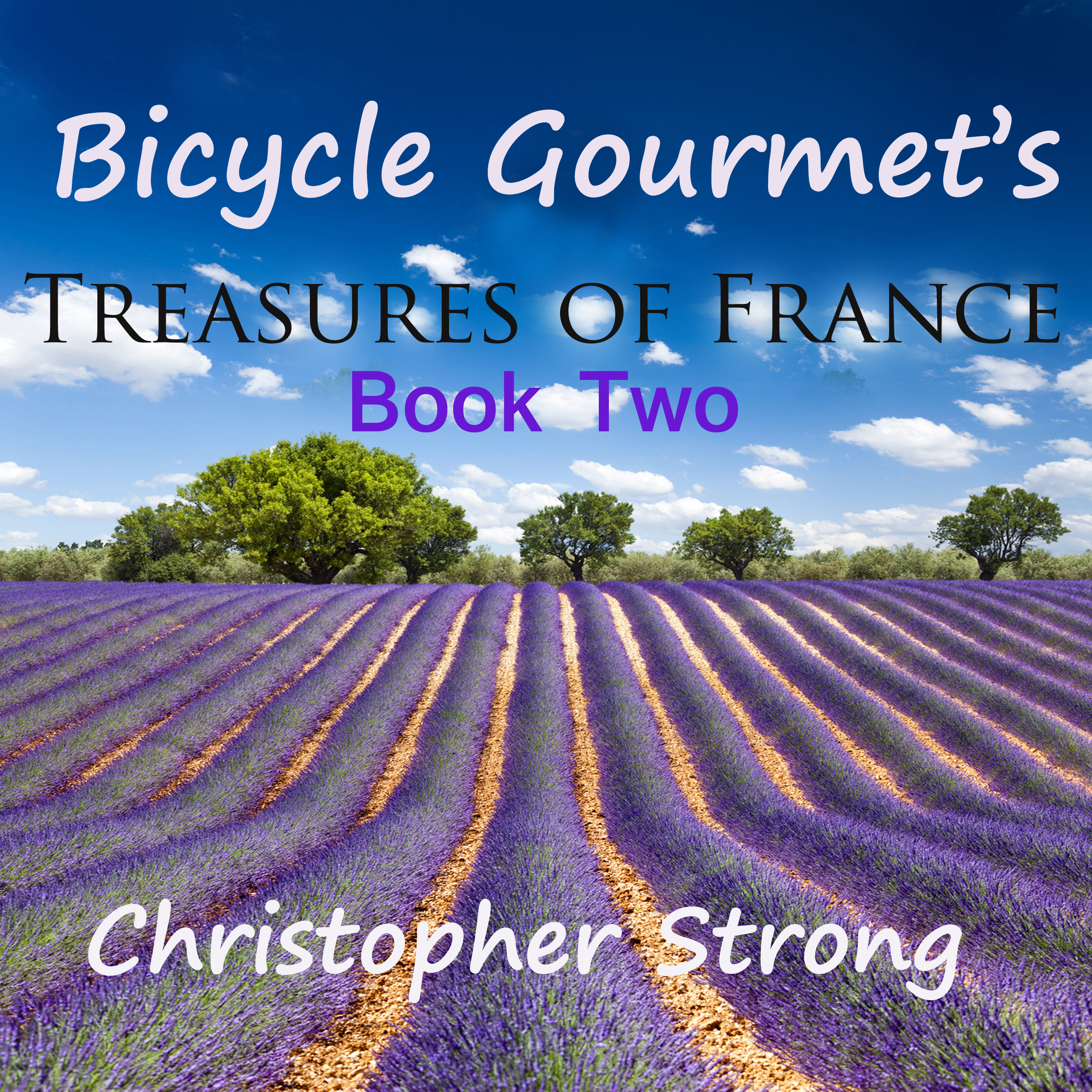 Printable Bicycle Gourmet's Treasures of France - Book Two Audiobook Cover Art