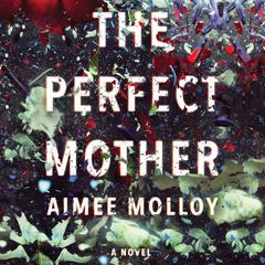 The Perfect Mother: A Novel Audiobook, by Aimee Molloy