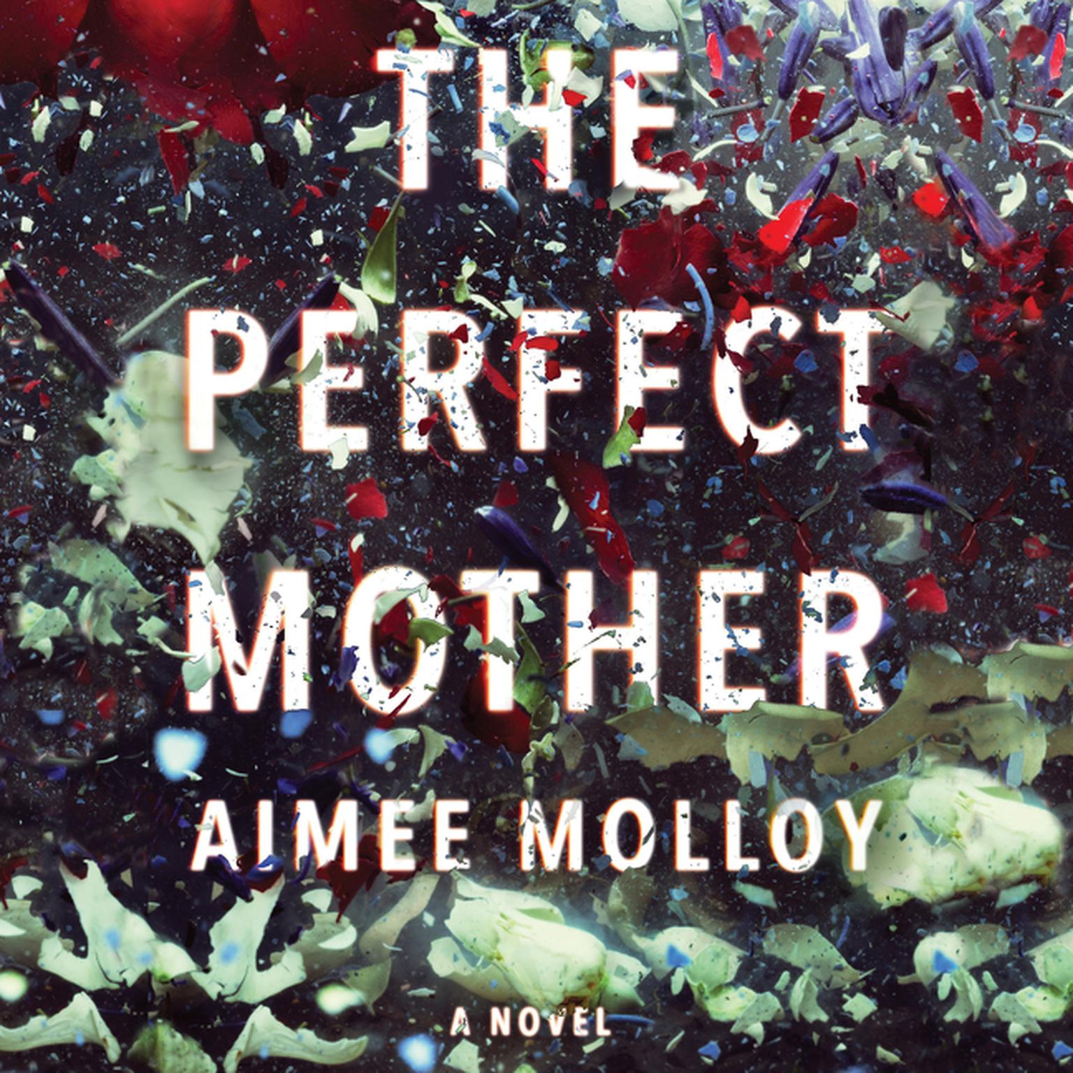 Printable The Perfect Mother: A Novel Audiobook Cover Art
