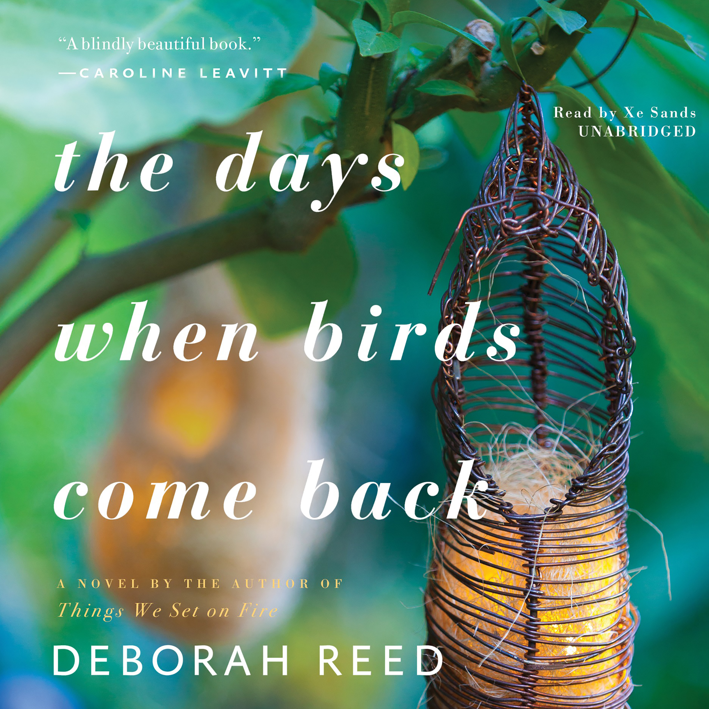 Printable The Days When Birds Come Back Audiobook Cover Art