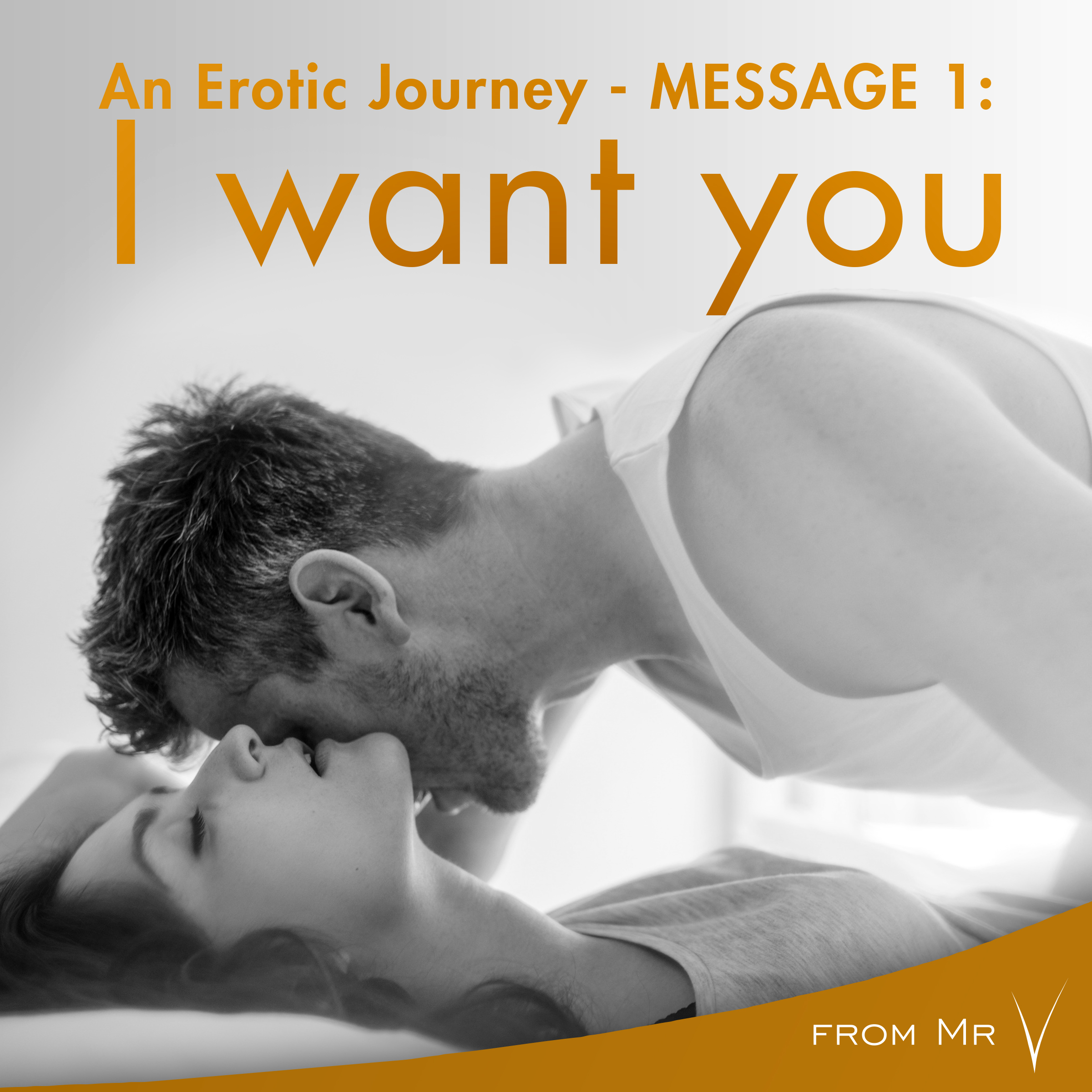 Printable An Erotic Journey, Message 1: I want you Audiobook Cover Art