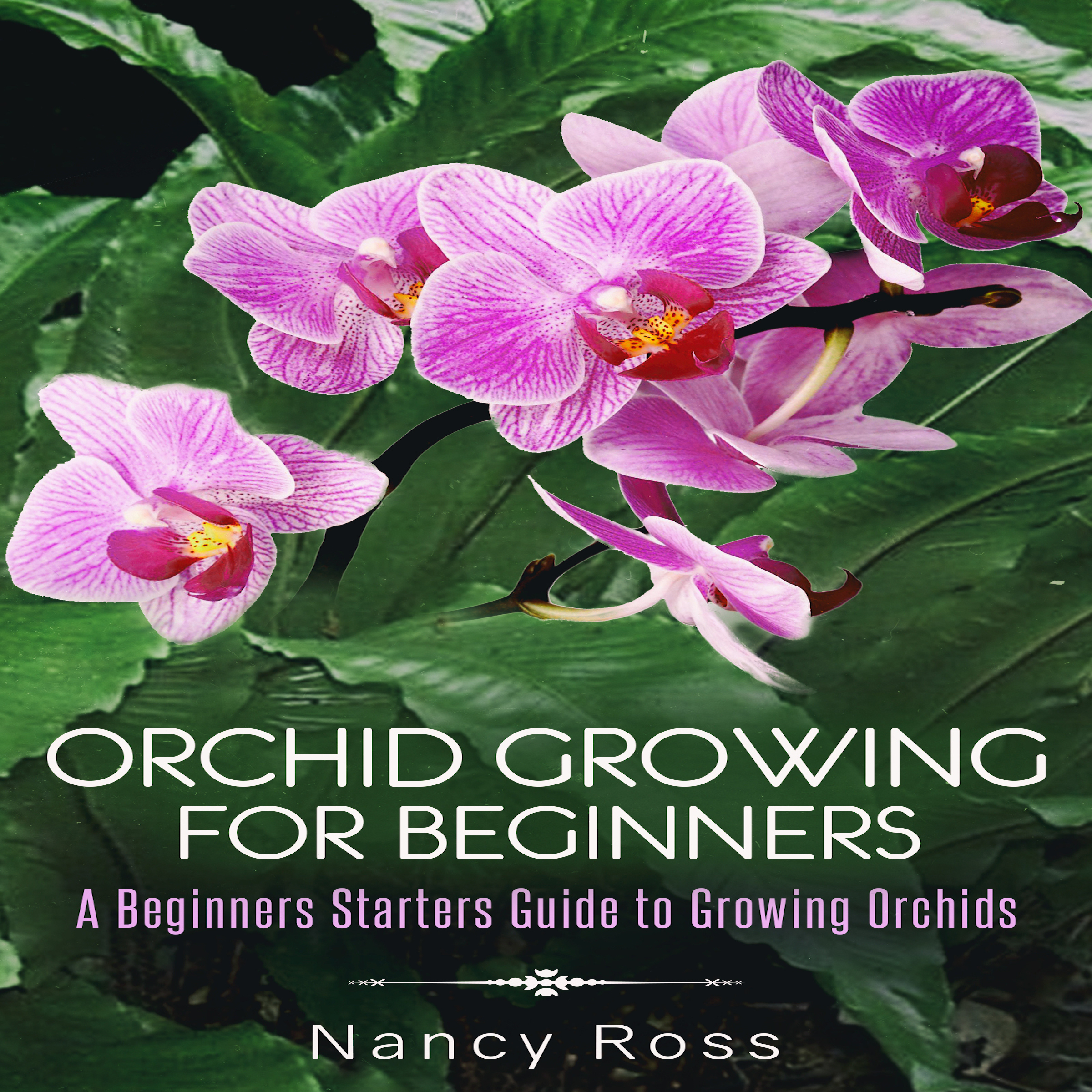 Printable Orchid Growing for Beginners: A Beginners Starters Guide to Growing Orchids Audiobook Cover Art