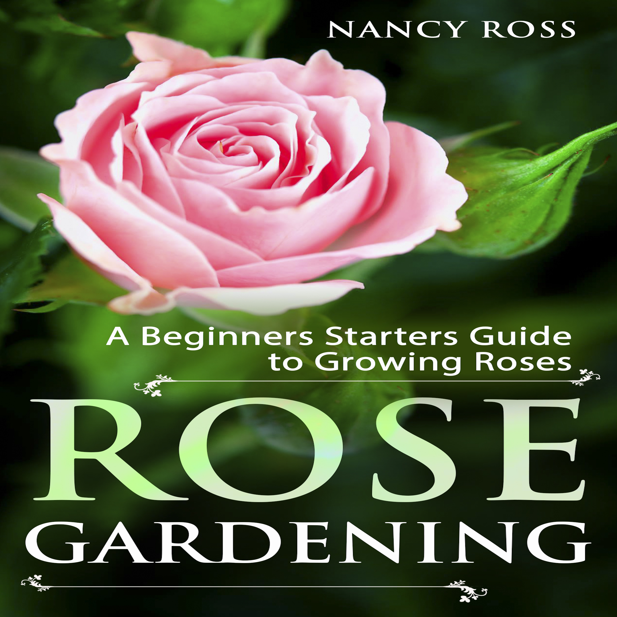 Printable Rose Gardening: A Beginners Starters Guide to Growing Roses Audiobook Cover Art