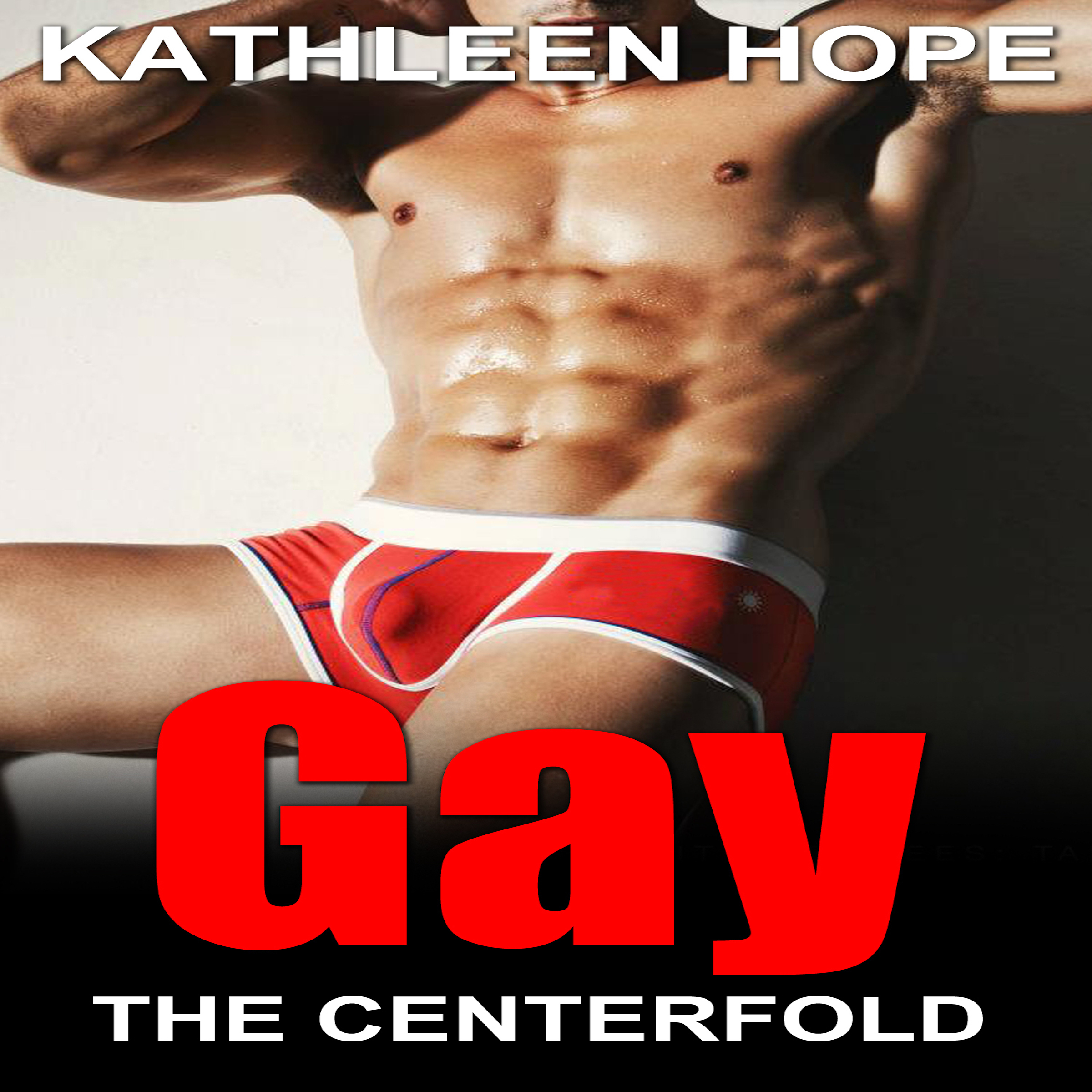 Printable Gay: The Centerfold Audiobook Cover Art