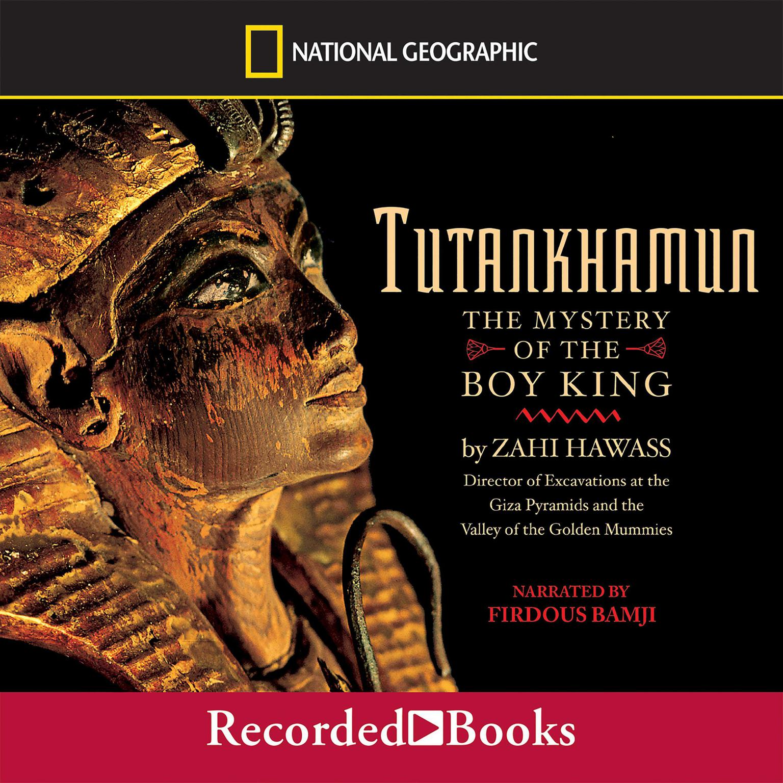 Printable Tutankhamun: The Mystery of the Boy King Audiobook Cover Art