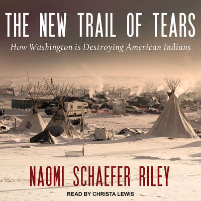 The New Trail of Tears: How Washington Is Destroying American Indians Audiobook, by