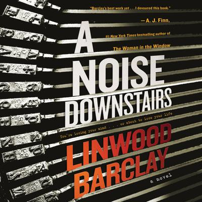 A Noise Downstairs: A Novel Audiobook, by