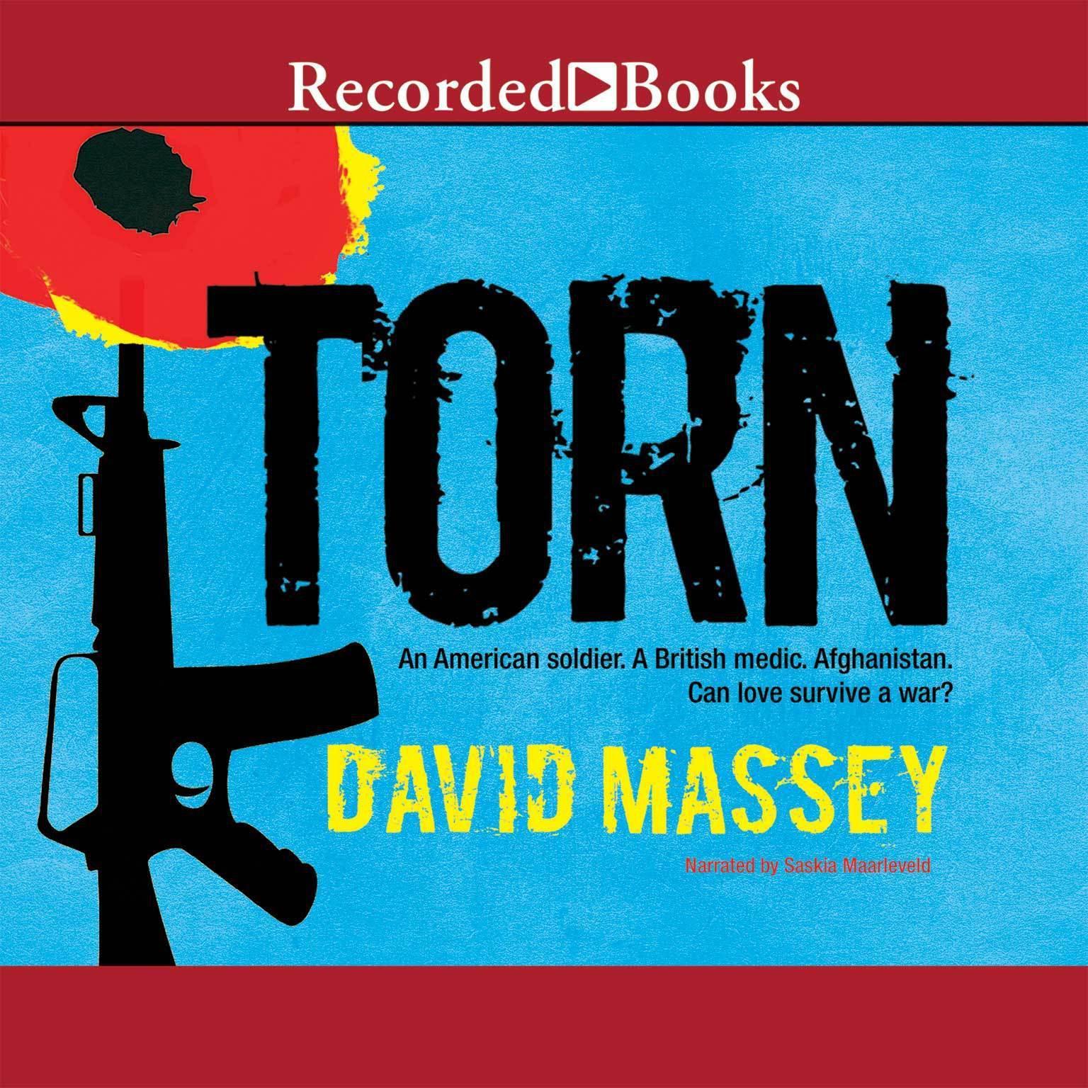 Torn Audiobook, by David Massey