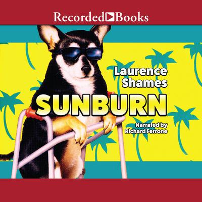 Sunburn Audiobook, by Laurence Shames