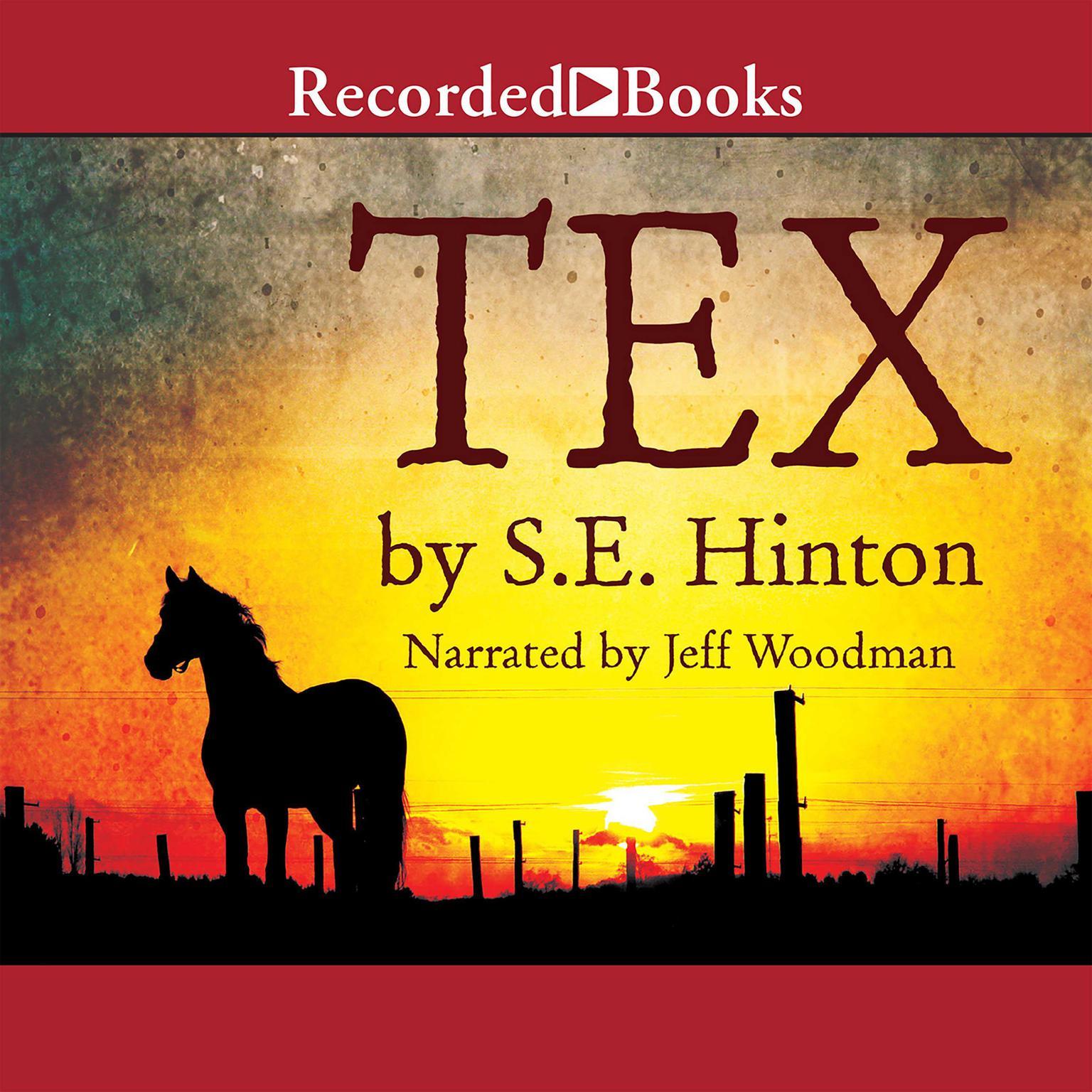Printable Tex Audiobook Cover Art