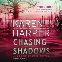 Chasing Shadows Audiobook, by Karen Harper