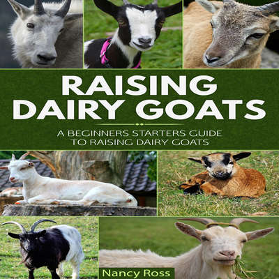 Raising Dairy Goats: A Beginners Starters Guide to Raising Dairy Goats Audiobook, by Nancy Ross