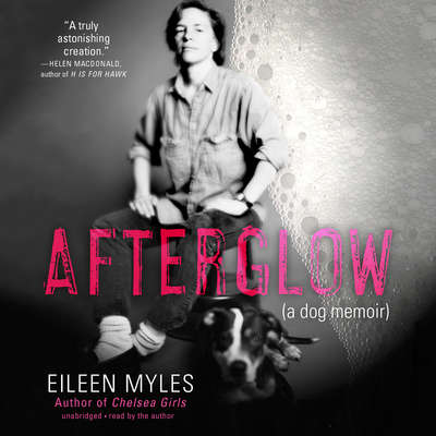 Afterglow: A Dog Memoir Audiobook, by Eileen Myles