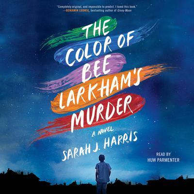 The Color of Bee Larkhams Murder: A Novel Audiobook, by Sarah J. Harris