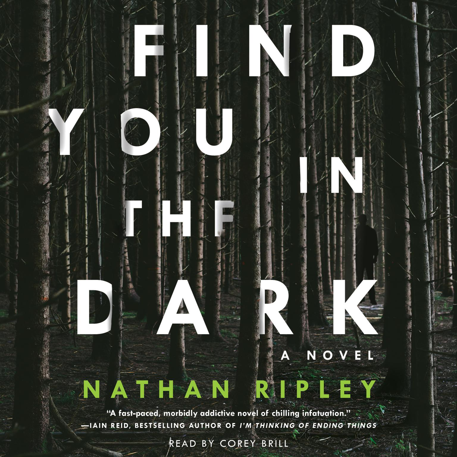 Printable Find You in the Dark: A Novel Audiobook Cover Art