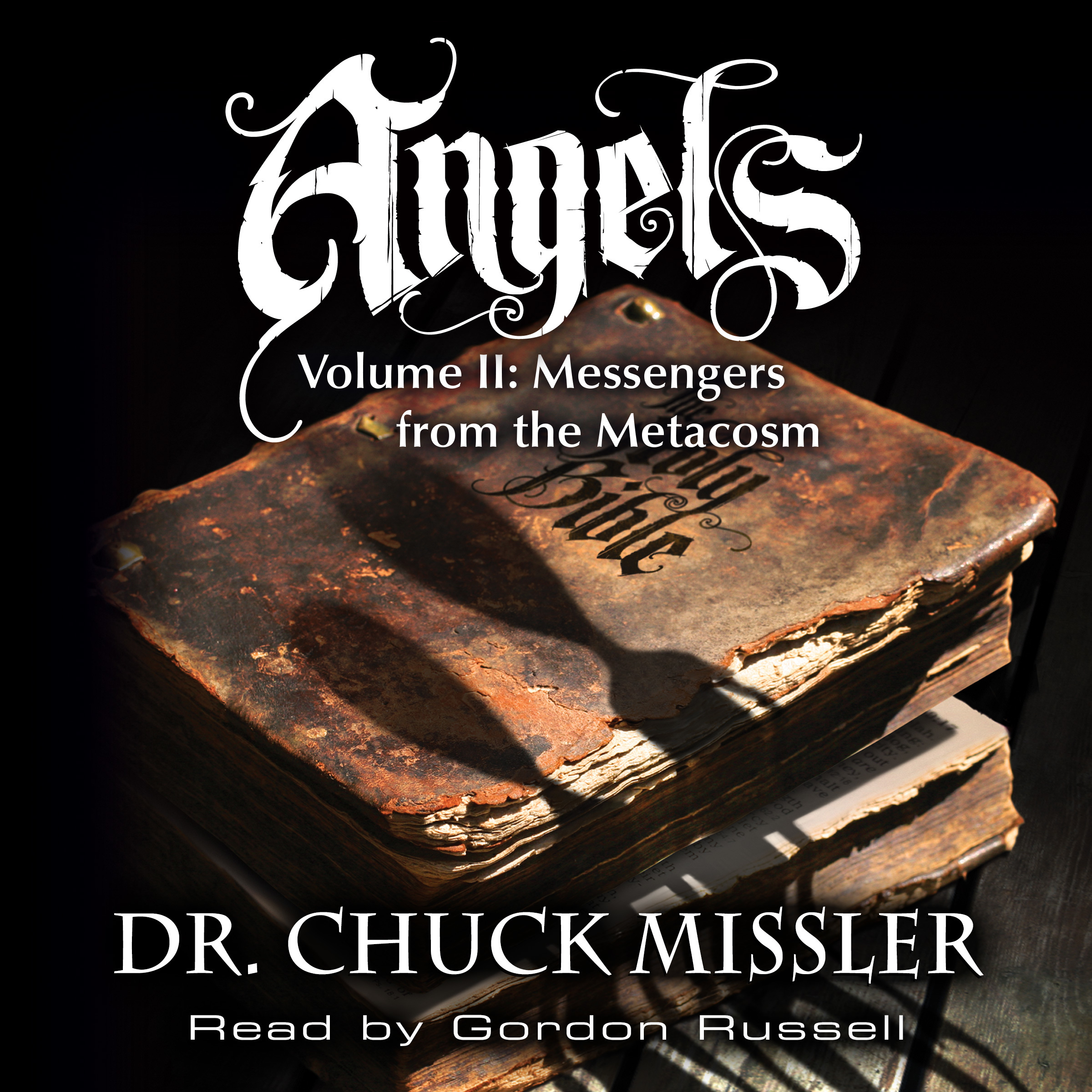 Printable Angels Volume II: Messengers from the Metacosm Audiobook Cover Art