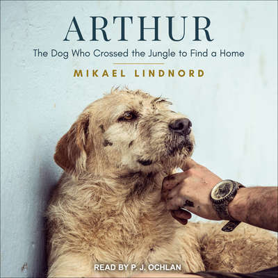 Arthur: The Dog Who Crossed the Jungle to Find a Home Audiobook, by Mikael Lindnord