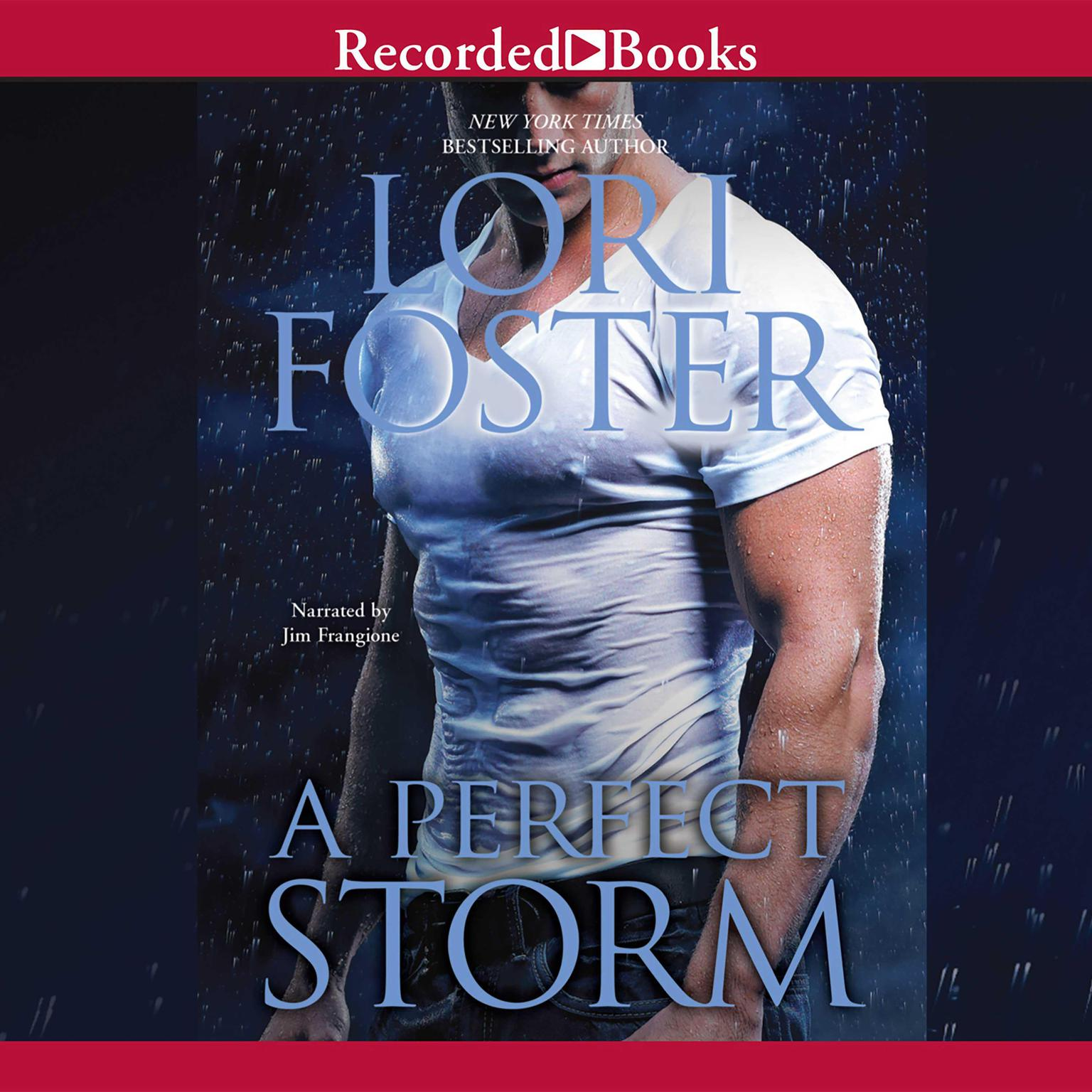Printable A Perfect Storm Audiobook Cover Art