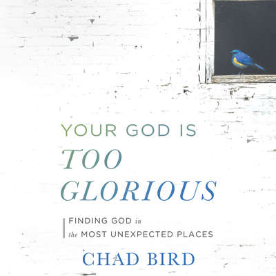 Your God Is Too Glorious: Finding God in the Most Unexpected Places Audiobook, by Chad Bird