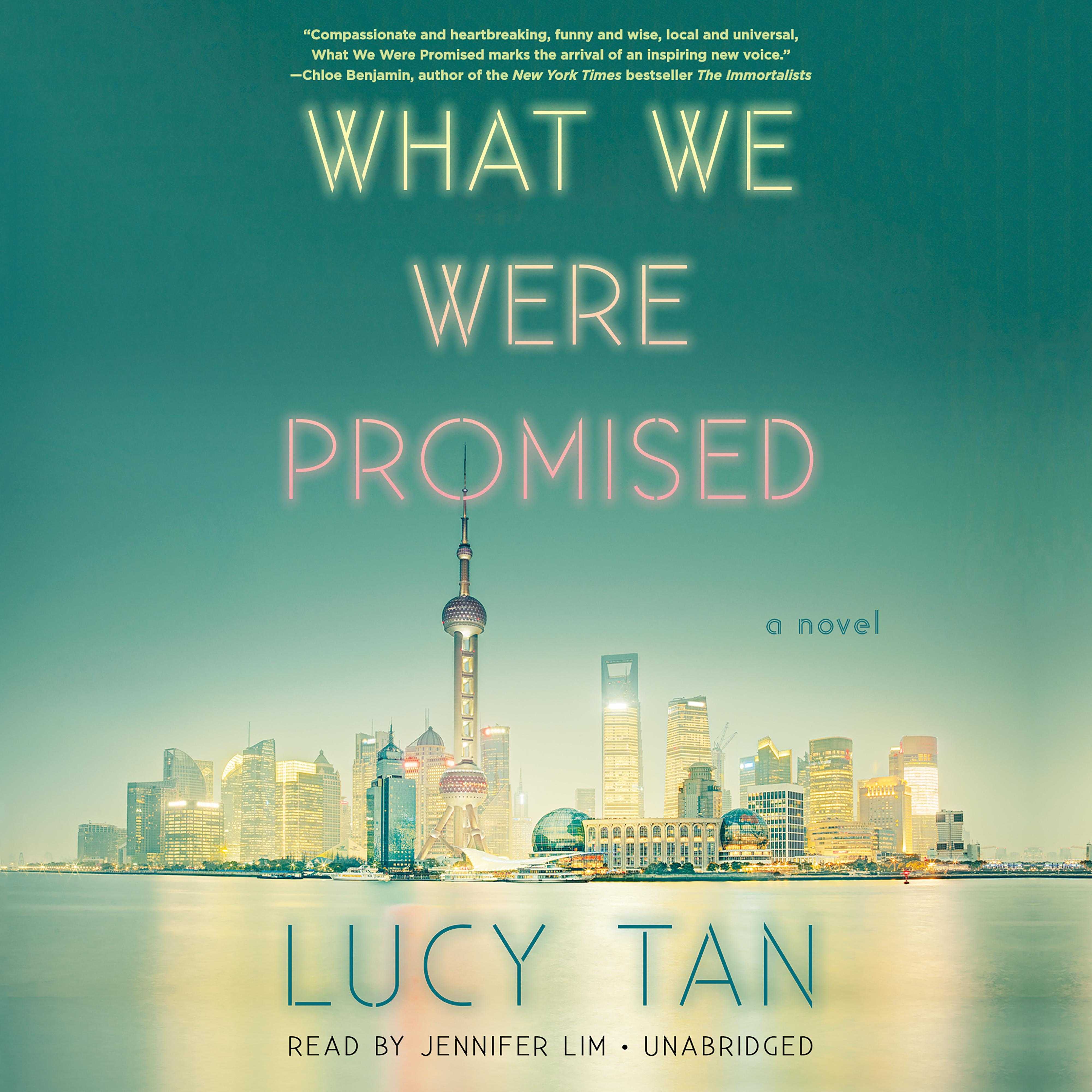 Printable What We Were Promised Audiobook Cover Art