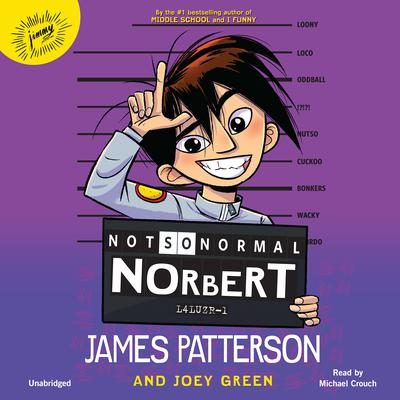 Not So Normal Norbert Audiobook, by James Patterson