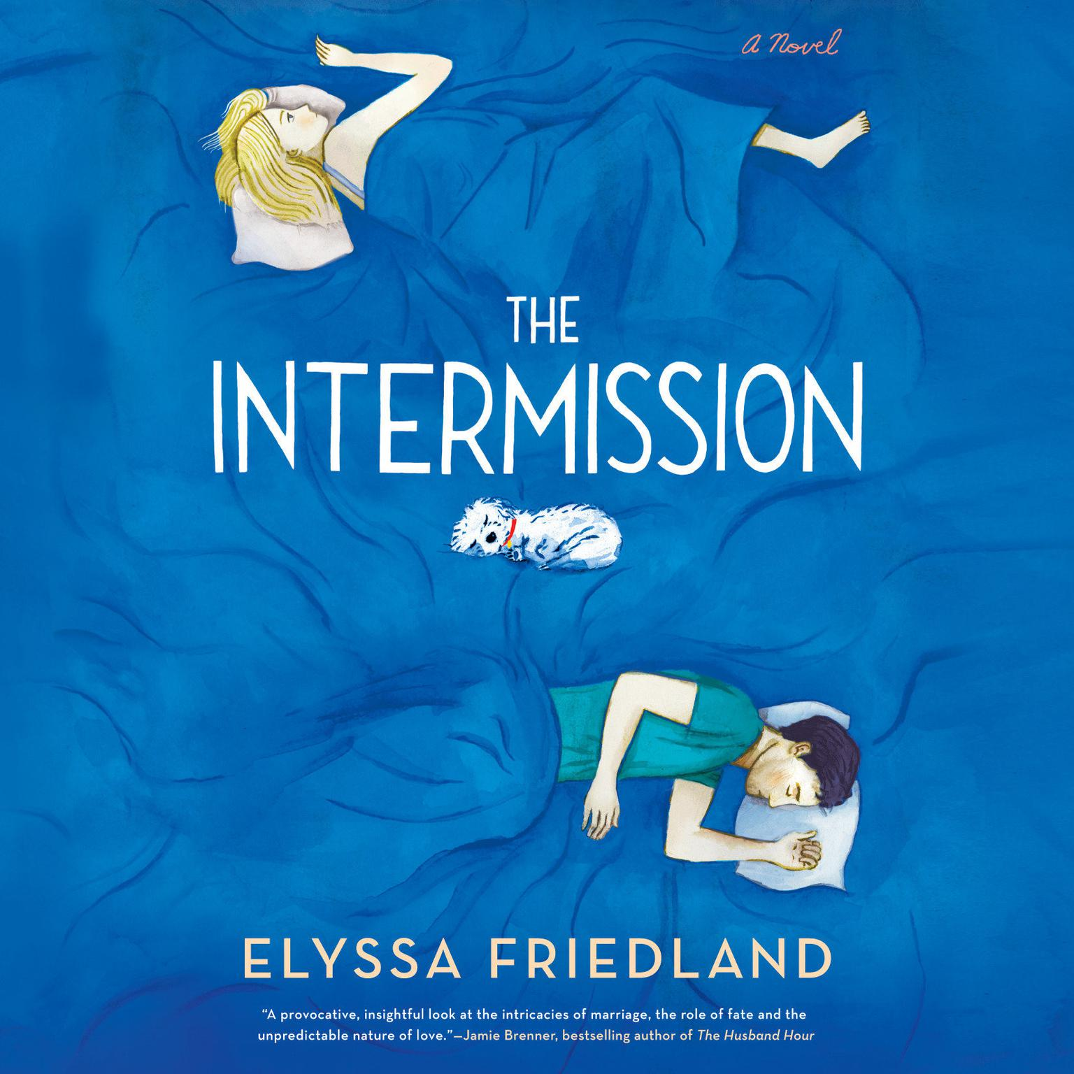 Printable The Intermission Audiobook Cover Art