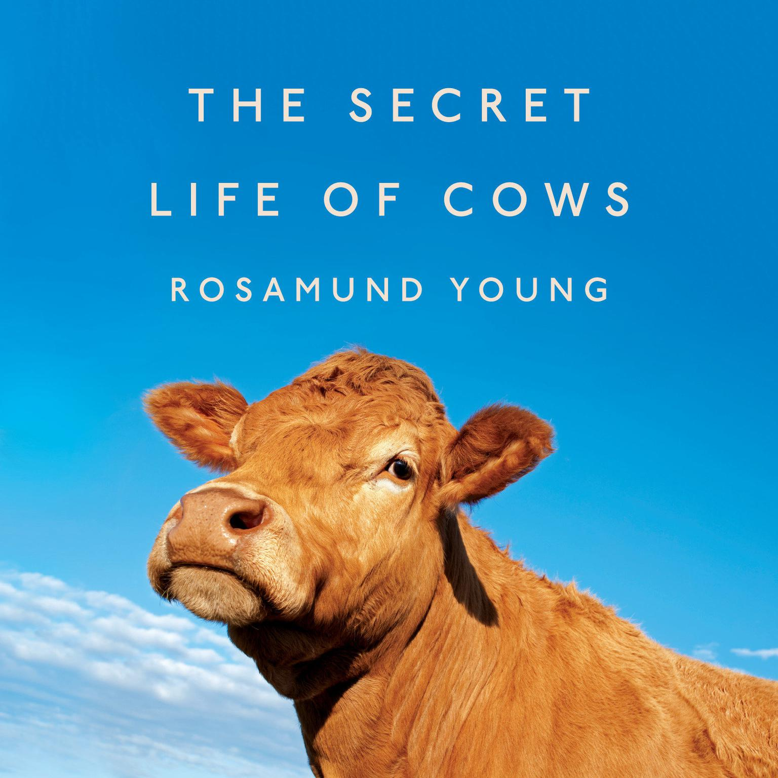 Printable The Secret Life of Cows Audiobook Cover Art