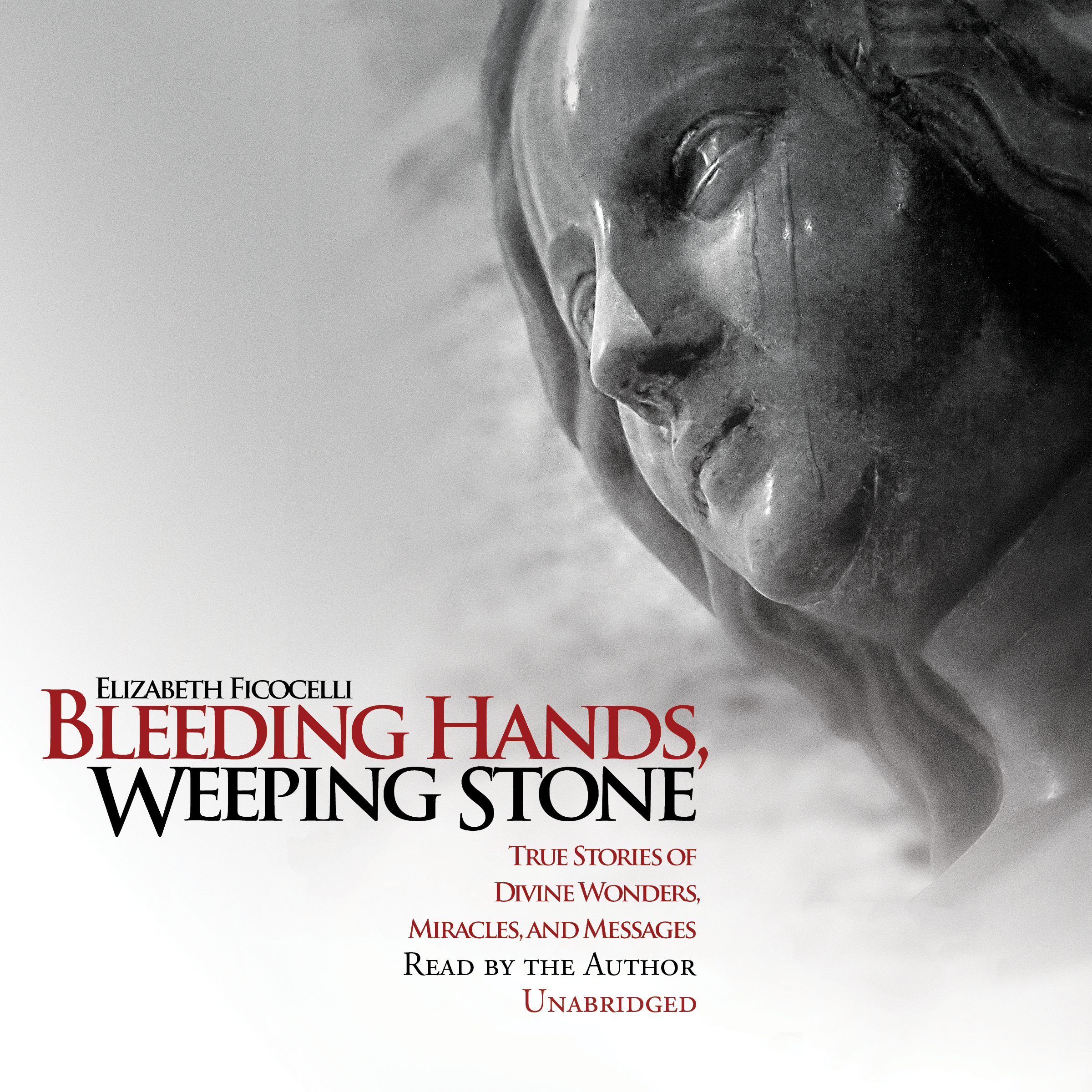 Printable Bleeding Hands, Weeping Stone:  True Stories of Divine Wonders, Miracles, and Messages Audiobook Cover Art