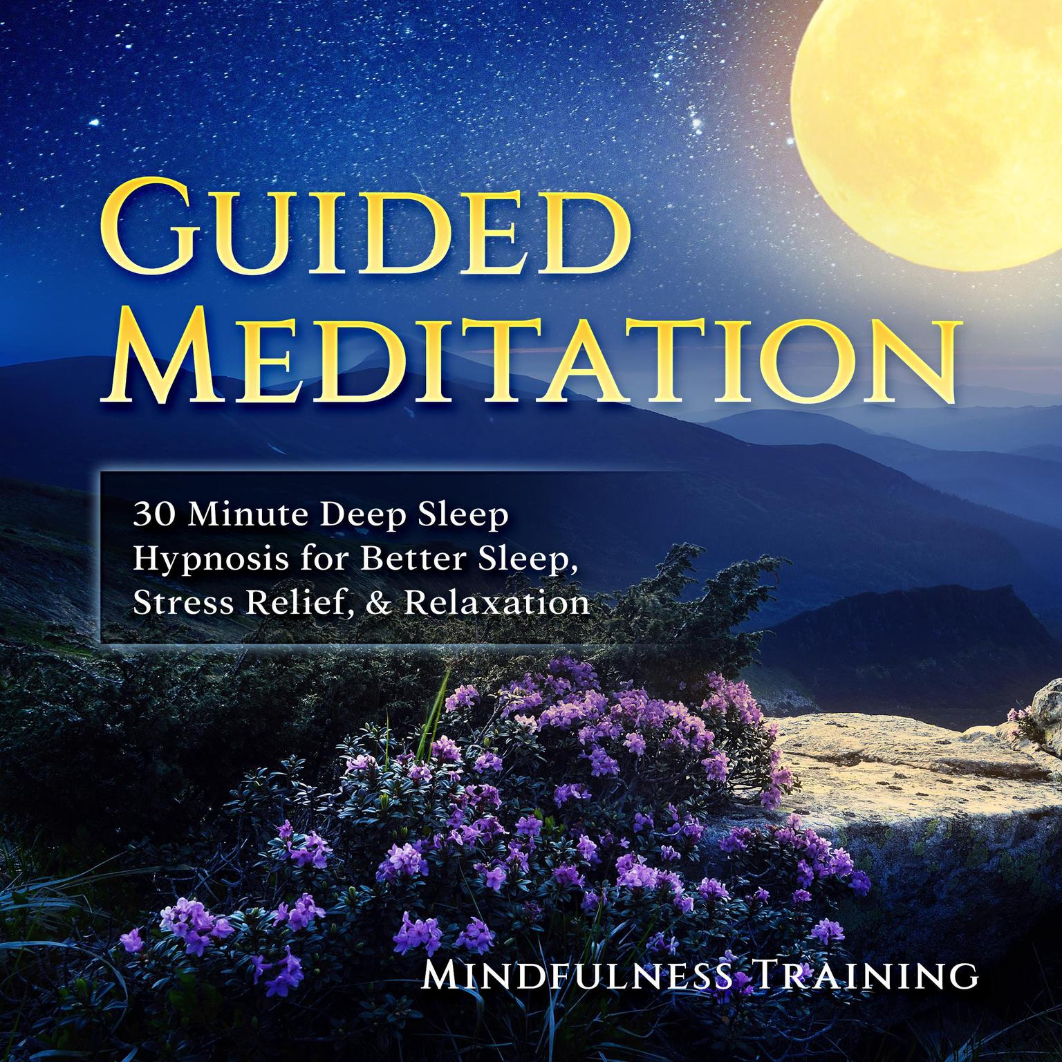 Printable Guided Meditation: 30 Minute Deep Sleep Hypnosis for Better Sleep, Stress Relief, & Relaxation (Self Hypnosis, Affirmations, Guided Imagery & Relaxation Techniques) Audiobook Cover Art