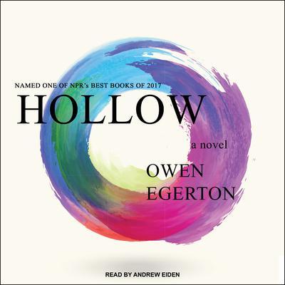 Hollow: A Novel Audiobook, by Owen Egerton