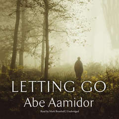 Letting Go Audiobook, by Abe Aamidor