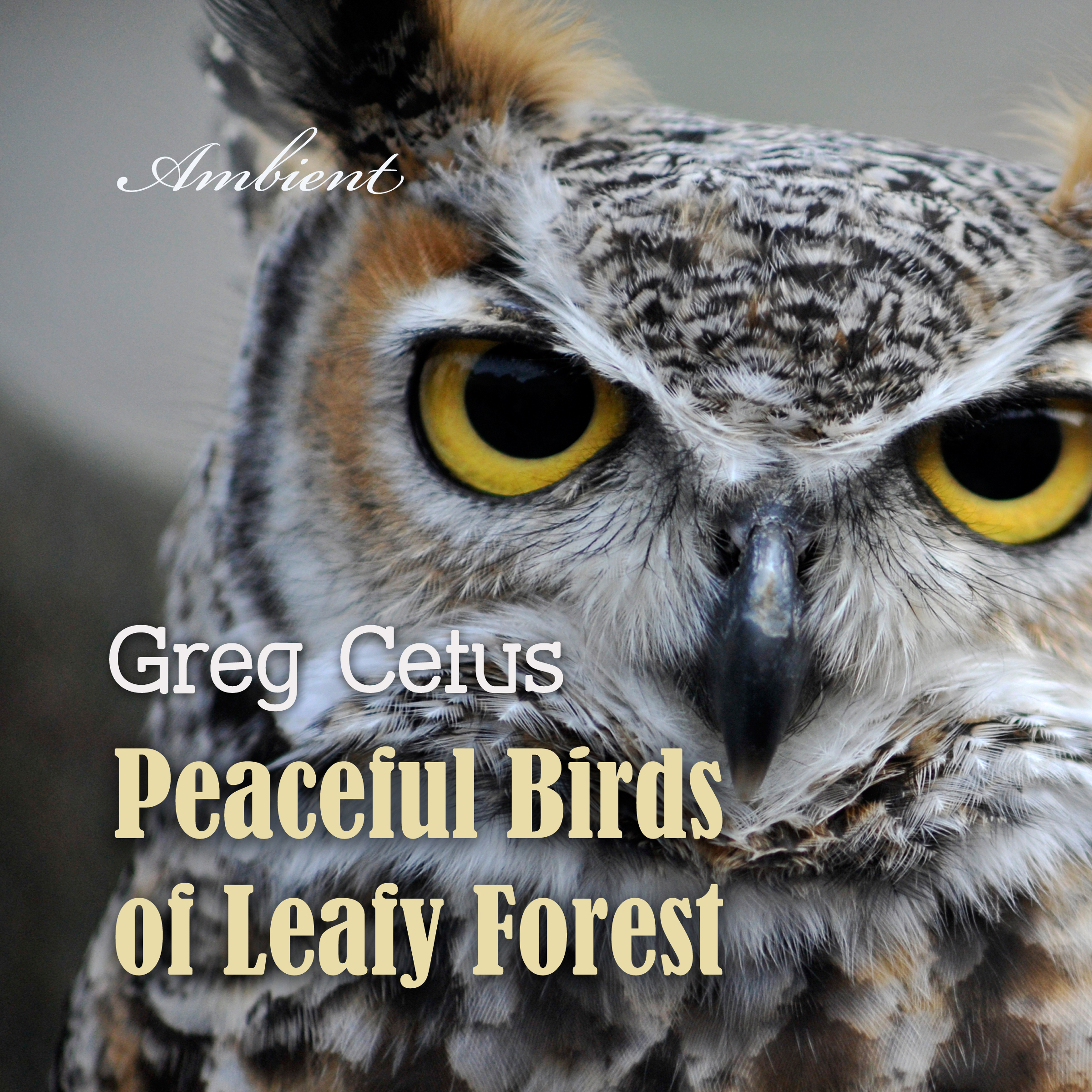 Printable Peaceful Birds of Leafy Forest: Ambient Sounds for Relaxation and Focus Audiobook Cover Art